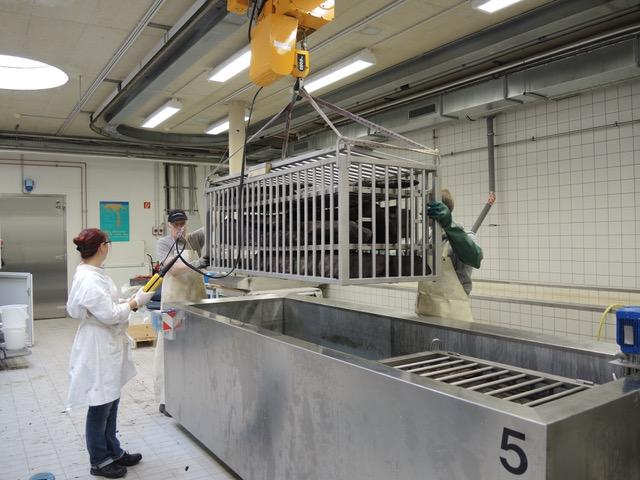 Fotos: Hartke, LVR-LandesMuseum Bonn und